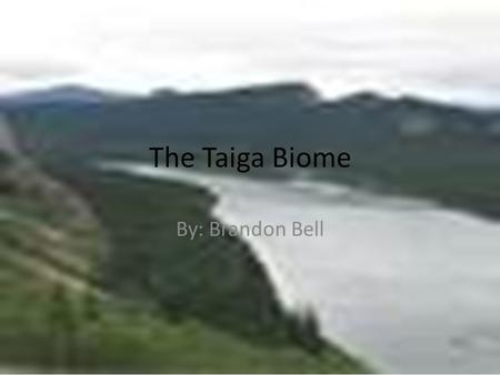 The Taiga Biome By: Brandon Bell.
