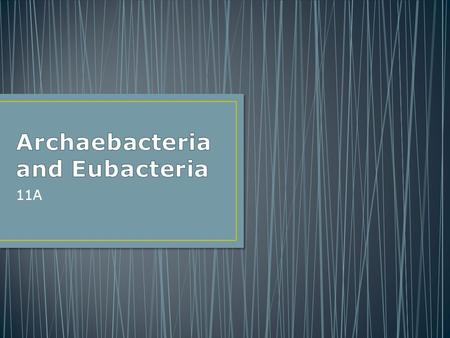 11A. Archaebacteria and Eubacteria share many characteristics but are classified into their own taxa Archaebacteria and Eubacteria share many characteristics.