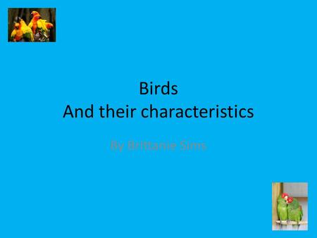 Birds And their characteristics By Brittanie Sims.