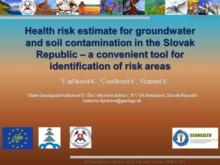Www.geology.sk 29 th International conference SEGH, 8-12 July Toulouse, FRANCE 2013 Health risk estimate for groundwater and soil contamination in the.