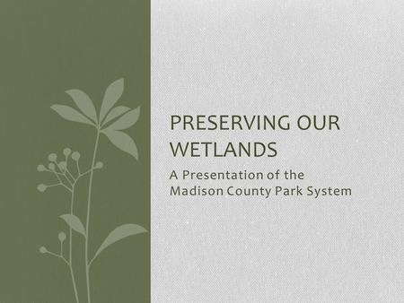 A Presentation of the Madison County Park System PRESERVING OUR WETLANDS.