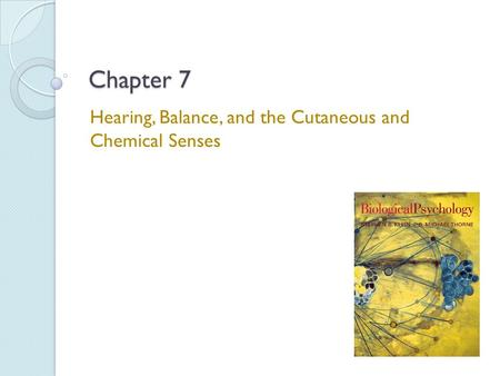 Chapter 7 Hearing, Balance, and the Cutaneous and Chemical Senses.