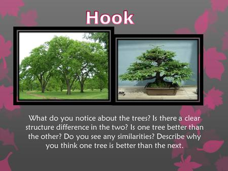 Hook What do you notice about the trees? Is there a clear structure difference in the two? Is one tree better than the other? Do you see any similarities?