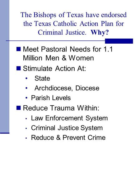 The Bishops of Texas have endorsed the Texas Catholic Action Plan for Criminal Justice. Why? Meet Pastoral Needs for 1.1 Million Men & Women Stimulate.
