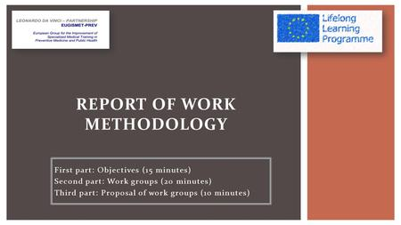 First part: Objectives (15 minutes) Second part: Work groups (20 minutes) Third part: Proposal of work groups (10 minutes) REPORT OF WORK METHODOLOGY.
