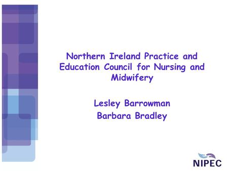 Northern Ireland Practice and Education Council for Nursing and Midwifery Lesley Barrowman Barbara Bradley.