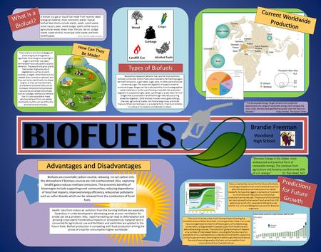 BIOFUELS Advantages and Disadvantages Brandie Freeman What is a