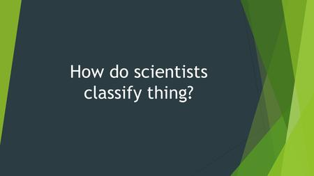 How do scientists classify thing?. By sorting them into groups.