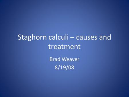 Staghorn calculi – causes and treatment Brad Weaver 8/19/08.