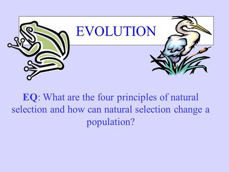 EVOLUTION EQ: What are the four principles of natural selection and how can natural selection change a population?