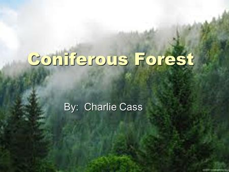 Coniferous Forest By: Charlie Cass By: Charlie Cass.
