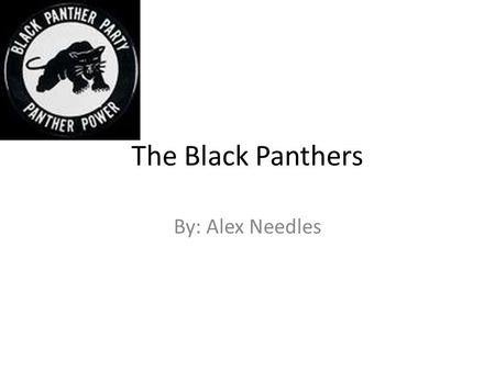 The Black Panthers By: Alex Needles. What the Black Panthers were The Black Panthers were initially formed to protect local communities from brutality.