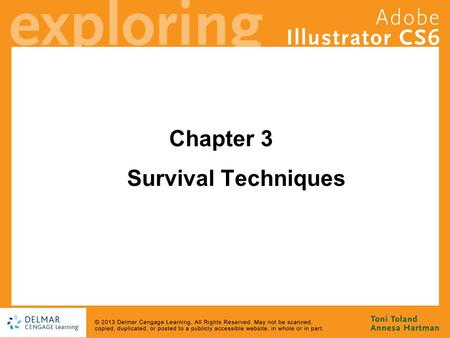 Chapter 3 Survival Techniques. Goals Discover that being an Illustrator artist is more than just knowing the tools Develop a basic understanding of the.
