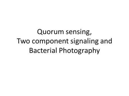 Quorum sensing, Two component signaling and Bacterial Photography.