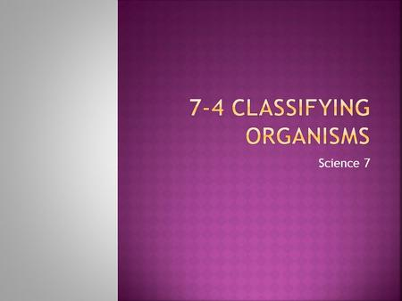 Science 7.  Explain why biologists classify organisms.  Relate the levels of classification to the relationships between organisms.  List characteristics.