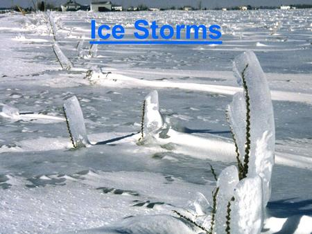 Ice Storms. Why Study Ice Storms? Ice accumulation can: –cause extensive power outages –halt air and ground transportation –cause considerable property.