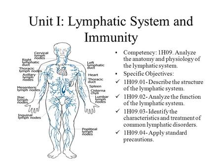 2.04 Understand the functions and disorders of the lymphatic system ...
