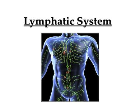 Lymphatic System. Transportation system that allows waste products from cells to be transported back to the blood stream interstitial fluid Our cells.