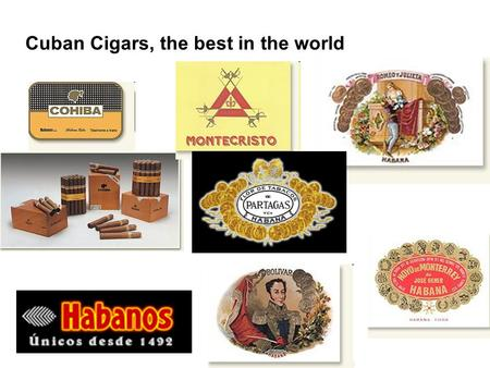 Cuban Cigars, the best in the world. Main regions Cultivation Leaves processing.