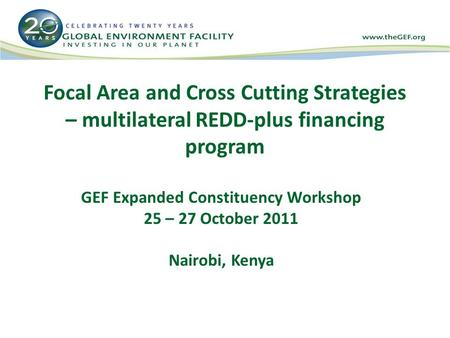 Focal Area and Cross Cutting Strategies – multilateral REDD-plus financing program GEF Expanded Constituency Workshop 25 – 27 October 2011 Nairobi, Kenya.