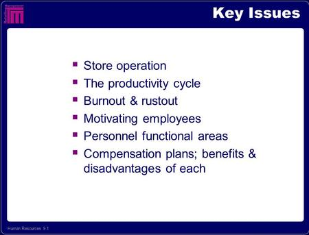 Human Resources 9.1 Key Issues  Store operation  The productivity cycle  Burnout & rustout  Motivating employees  Personnel functional areas  Compensation.