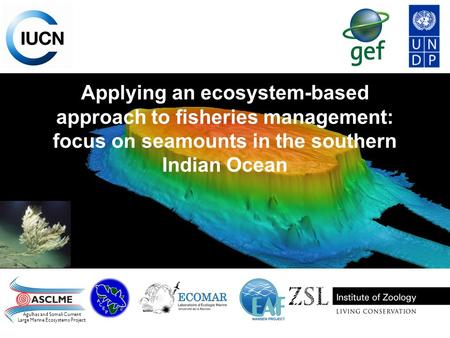 Applying an ecosystem-based approach to fisheries management: focus on seamounts in the southern Indian Ocean Agulhas and Somali Current Large Marine Ecosystems.