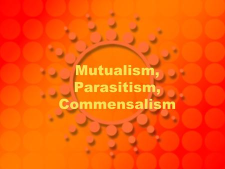 Mutualism, Parasitism, Commensalism. Mutualism Mutualism- interaction between two or more species where both species benefit from one another Example-