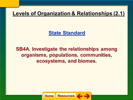 Levels of Organization & Relationships (2.1)