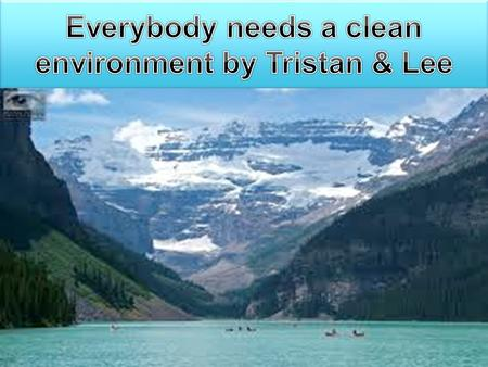 That's why I'm giving them my own 10 rules for having a cleaner environment. not just any environment, one that they can keep – maybe forever. All right,
