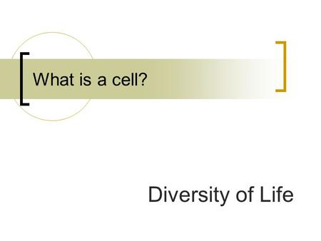 What is a cell? Diversity of Life.