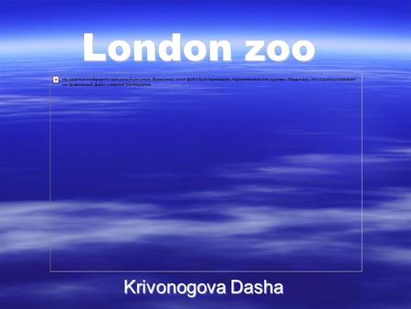London zoo Krivonogova Dasha. In London there is a very old zoo, which many children with their parents and friends visit it every day.