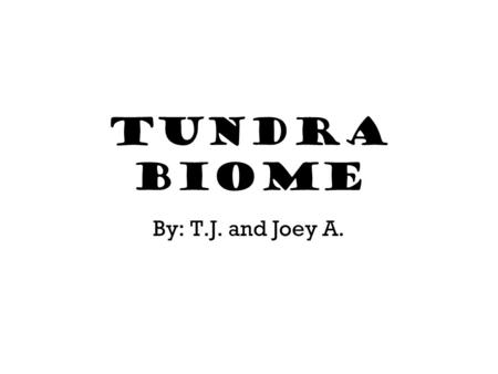 Tundra Biome By: T.J. and Joey A.. Part 1 This section will be about 1. The temperature. 2. The average annual precipitation. 3. Natural features that.