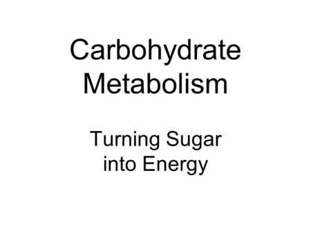 Carbohydrate Metabolism Turning Sugar into Energy.