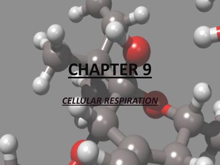 CHAPTER 9 CELLULAR RESPIRATION.