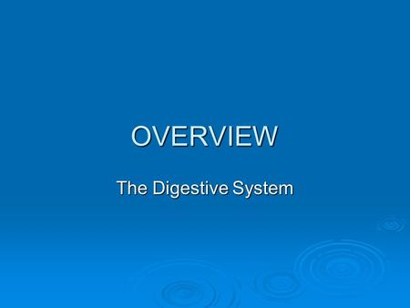 OVERVIEW The Digestive System. Digestive System  The digestive system is also called the gastrointestinal (GI) system.  This system is responsible for.