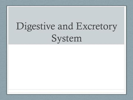 Digestive and Excretory System. Nutrients 6 Nutrients for Good Health 1. Waterinvolved in almost all chemical reactions.