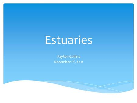 Estuaries Payton Collins December 1 st, 2011. The Basics and Terminology  An estuary is the area in which rivers meet the sea.  One of the most productive.