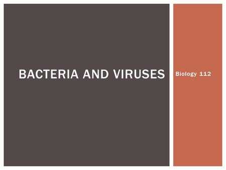 Biology 112 BACTERIA AND VIRUSES.  Smallest and most common microorganisms  Unicellular organisms that lack a nucleus  They can be divided into two.