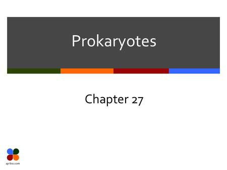 Prokaryotes Chapter 27. Slide 2 of 20 Kingdom Monera  Prokaryotes  Unicellular (Single-celled) organisms that lack membrane-bound organelles and nuclei.