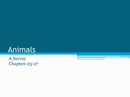 Animals A Survey Chapters 23-27. General Animal Characteristics 1 million + species of animals have been discovered 1. All animals are multicellular 2.