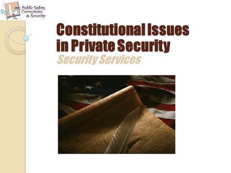 Security Services Constitutional Issues in Private Security.
