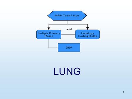 1 LUNG. 2 Equivalent Terms, Def, Charts, Tables, Illustrations.