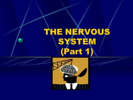 THE NERVOUS SYSTEM (Part 1) Central Nervous System Communication and coordination system of the body Seat of intellect and reasoning Consists of the.