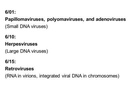 papilloma vakcina vírus asl roma)