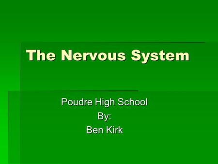 The Nervous System Poudre High School By: Ben Kirk.