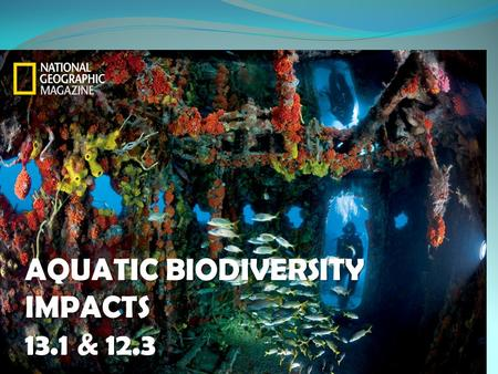 AQUATIC BIODIVERSITY IMPACTS 13.1 & 12.3. How much do we know? We have explored about 5% of the earth's global ocean and the world's interconnected oceans.