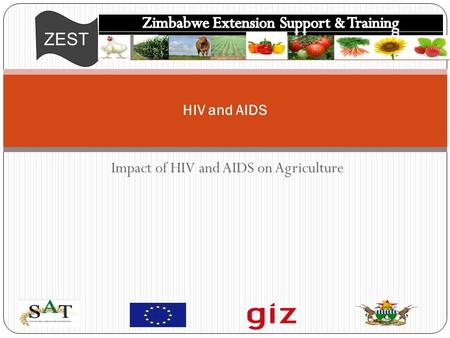 ZEST Impact of HIV and AIDS on Agriculture HIV and AIDS.