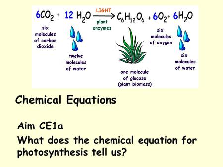 Aim CE1a What does the chemical equation for photosynthesis tell us?
