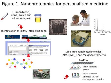 Human blood, urine, saliva and other samples Identification of highly interacting genes Label-free nanobiotechnologies (APA,QMC_D and Mass Spectrometry)