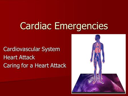 Cardiac Emergencies Cardiovascular System Heart Attack Caring for a Heart Attack.